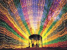 famous for santas wonderland college station their endless christmas lights - Christmas Lights College Station
